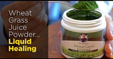 Wheat Grass Juice Powder, Nature's Ultimate Healer