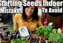 Starting Seeds Indoors for Your Spring Garden – 6 Mistakes to Avoid /  Spring Garden Series #1