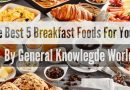How To Choose The Best Breakfast Foods For Your Health | General Knowledge World