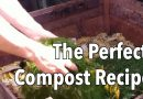 The Perfect Compost Recipe – How to Get Your Compost Heap Cooking!