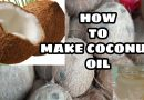 HOW TO MAKE COCONUT OIL AT HOME  / ORGANIC MORE BENEFITS