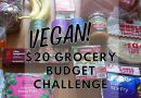 VEGAN $20 GROCERY BUDGET CHALLENGE | A Week of Healthy Meals for $20 at Target